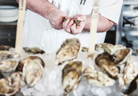 Shucked: A Beginner's Guide to Oysters